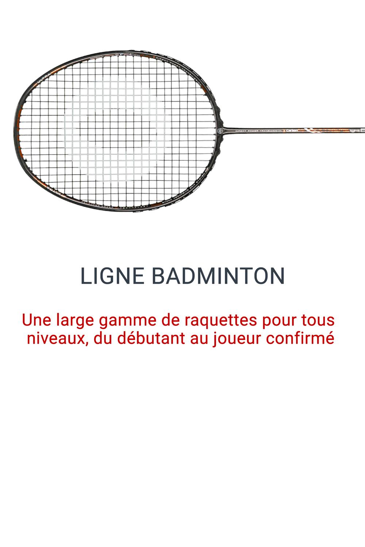Ligne Badminton